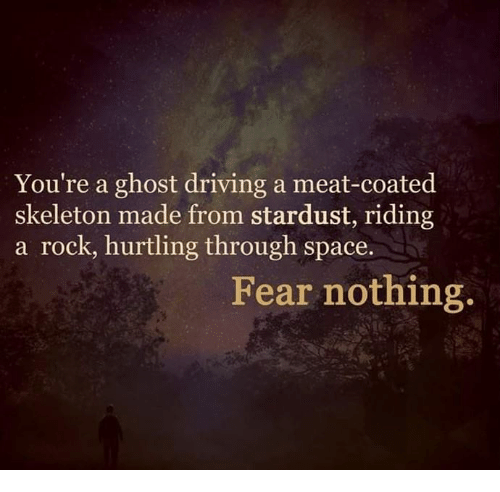 youre-a-ghost-driving-a-meat-coated-skeleton-made-from-stardust-33374193